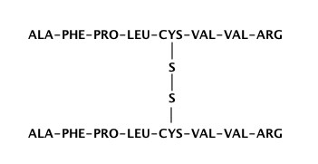 Disulfide parallel