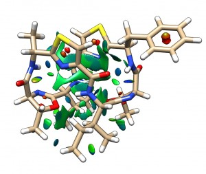 Patellamide C modelled structure